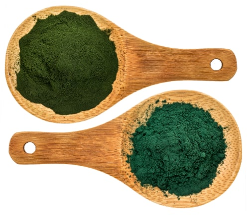 alternative protein sources like algae, seaweed and insects may grow in popularity