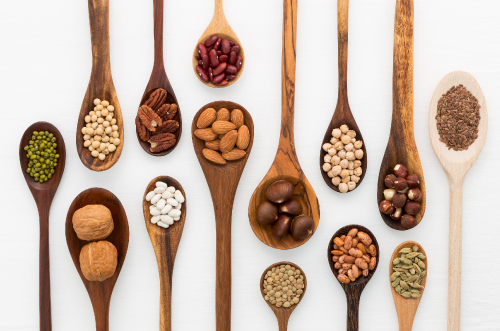 what are the plant based alternative proteins