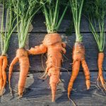 Upcycle Food Reduce Food Waste Buy Ugly Vegetables and Fruits